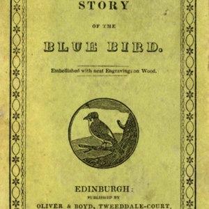 s0037Ab010_Story Bluebird_001.jpg